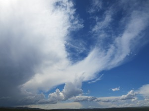 Cloud watching is a great way to pass the time, especially with a storm front coming through!