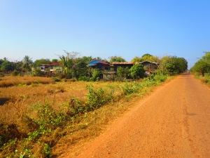 This is what comes to mind when I think of Southern Laos during January. Bone dry rice paddies!
