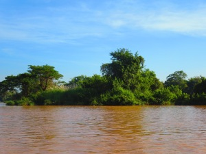 The mighty muddy Mekong!