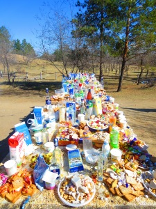 What do people give to the Mother Tree? Take a look! Milk, juice, vodka, soda, crackers, cookies, cheese, dried curd, butter. The list goes on!